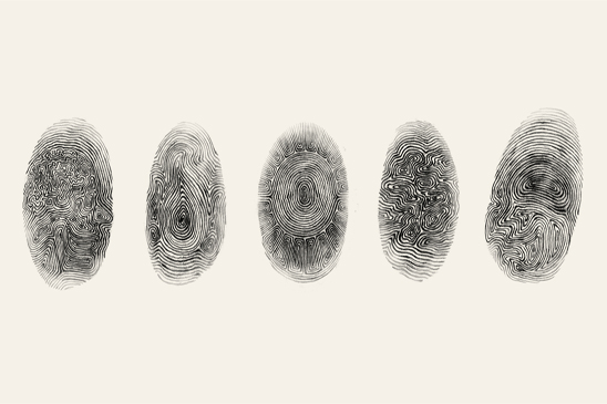 Busting Through Fingerprints and Police Records